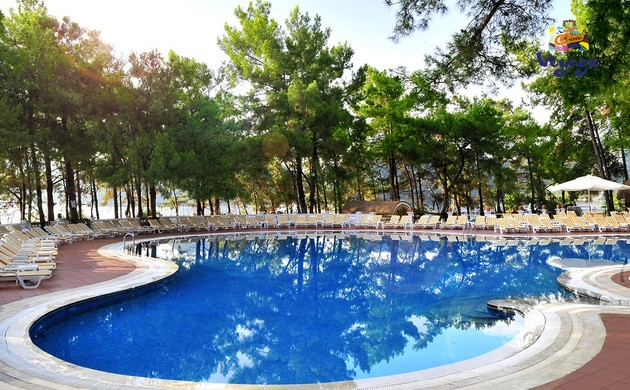 Изображение №6 - Grand Yazici Club Marmaris Palace 5*